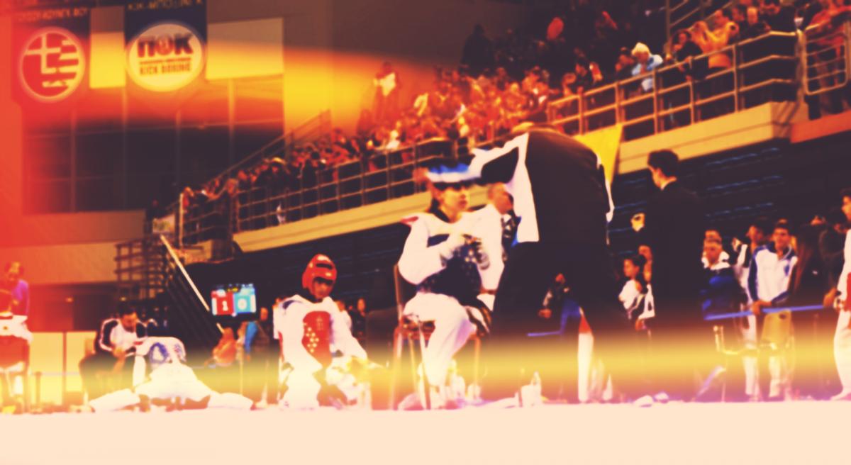 gga sxolesproponiton taekwondo