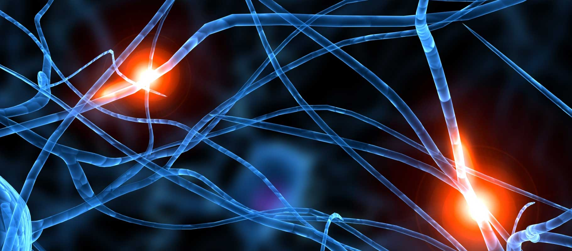neurosystem